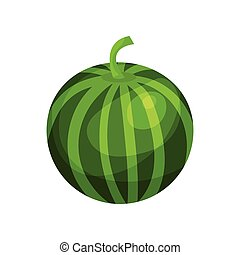 Ripe watermelon cartoon vector Illustration