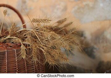Ripe wheat in a wicker basket