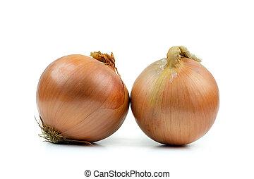 Ripe yellow onion on a white background