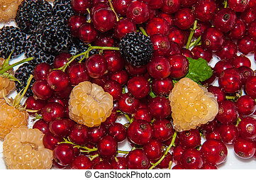 Yellow raspberries and red currants and blackberries