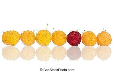Ripe yellow raspberries
