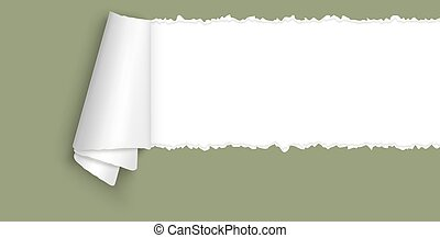 ripped open paper with space for text - green colored ripped...