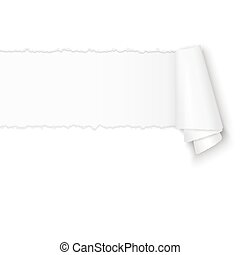 ripped open white paper with paper curl and free space