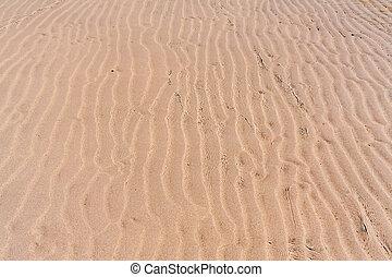 Ripple water on the beach