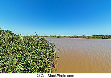Rippled Brown Muddy Water Landscape at St Lucia Estuary -...