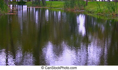 Rippled surface of pond or river