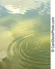 Ripples on the water. - Ripples on the water with sky...