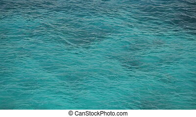 tropical sea surface