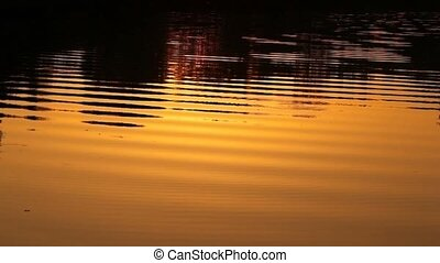 ripples on water in sunset light