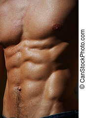 rippling male torso #4 - well defined naked male torso