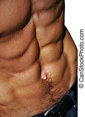 rippling male torso - well defined naked male torso