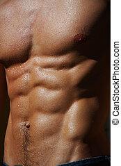 rippling, mannelijke , torso, #4