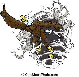 rips, águila, calvo, plano de fondo, mascota