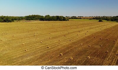 rise above field with bales of straw - Flight over a field...