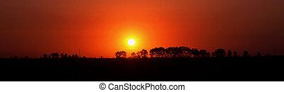 sun - Rising sun on a background horizon