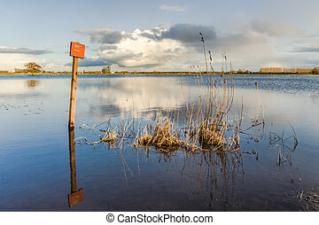Rising water level in the floodplains of the river IJssel,...