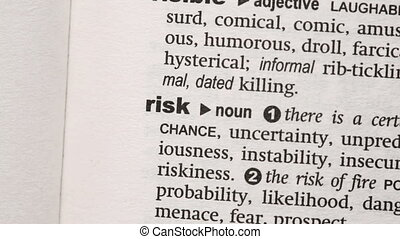 Risk highlighted in pink in the dictionary