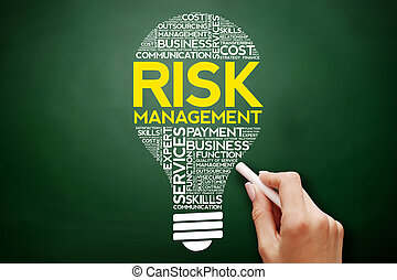 Risk Management bulb word cloud