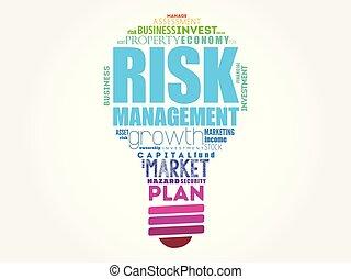 Risk Management light bulb word cloud collage, business...