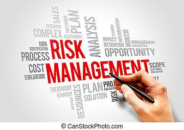 Risk management words cloud, business concept