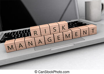 Risk Management text concept