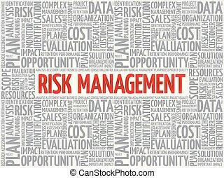 Risk Management word cloud, business concept