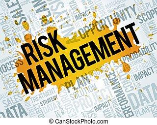 Risk Management word cloud