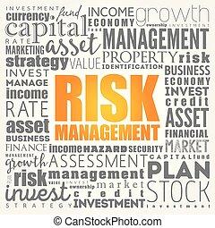 Risk Management word cloud collage, business concept...