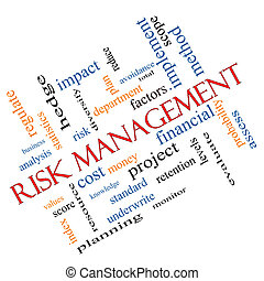 Risk Management Word Cloud Concept Angled
