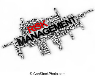 risk management word cloud over white background