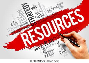 risorse