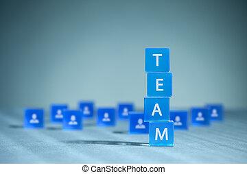 risorse umane, squadra