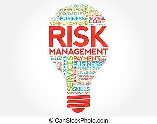 risque, gestion, ampoule, mot, nuage