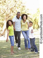 ritratto, camminare, parco, famiglia, felice