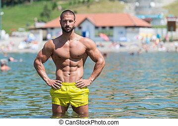 ritratto, di, uno, muscolare, sexy, uomo, in, biancheria intima