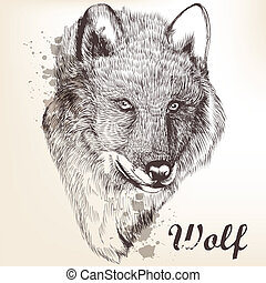 ritratto, mano, lupo, disegnato