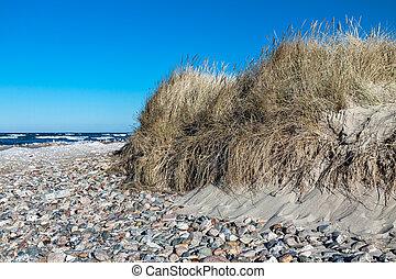 riva, duna