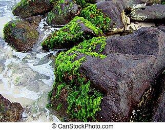 riva, roccioso