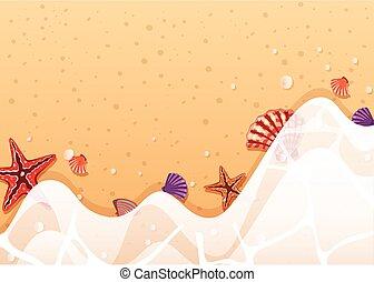 rivage, gabarit, etoile mer, fond, coquilles