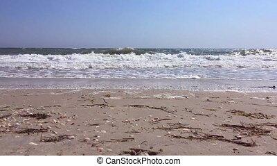 rivage, noir, sablonneux, vue mer