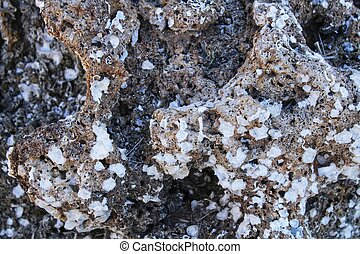 rivage, texture, rocher