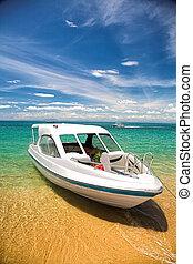 rivage, touriste, bateau