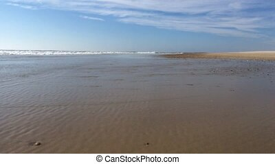 rivage, vagues, plage, atteindre