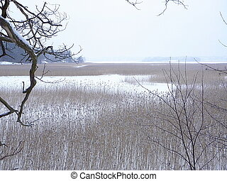 rivage, wintery