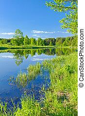 river., דלה, בהיר, נוף, narew