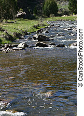 River 4493