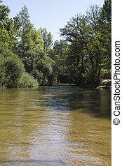 river, alberche riverbank in Toledo, Castilla La Mancha, Spain