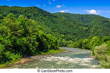 River among the forest in picturesque Carpathian mountains...