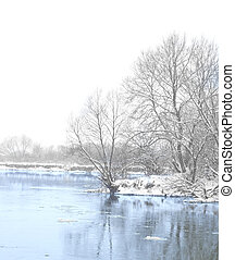 river and trees in winter season