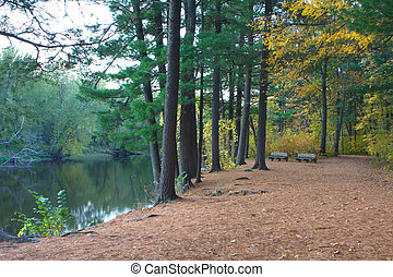 River Bank in October